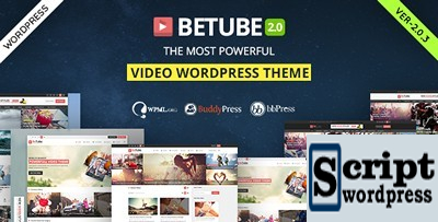 template-video-wordpress