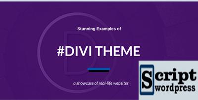 divi_theme