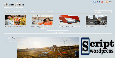 ThemeMin - Template Wordpress 2020